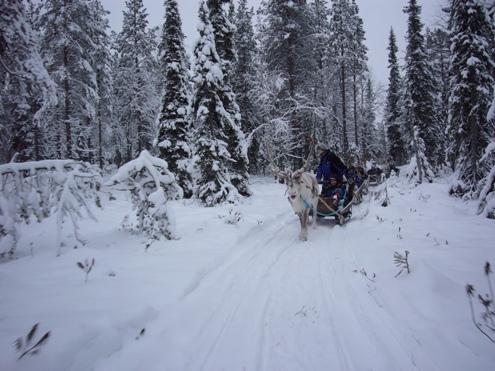 Salla Papa Noel en Laponia Viajacontuhijo Catai