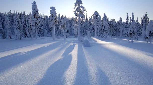 Paisaje de Laponia Papa Noel