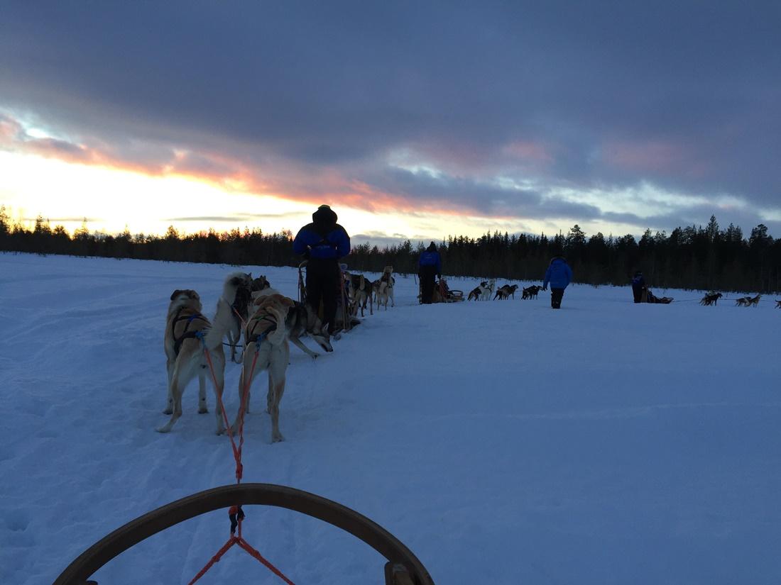 Rosa-G-Rovaniemi-Navidad-2015